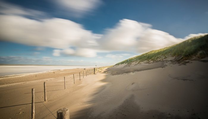 Coastal protection can pay for itself